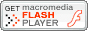 download a flash player